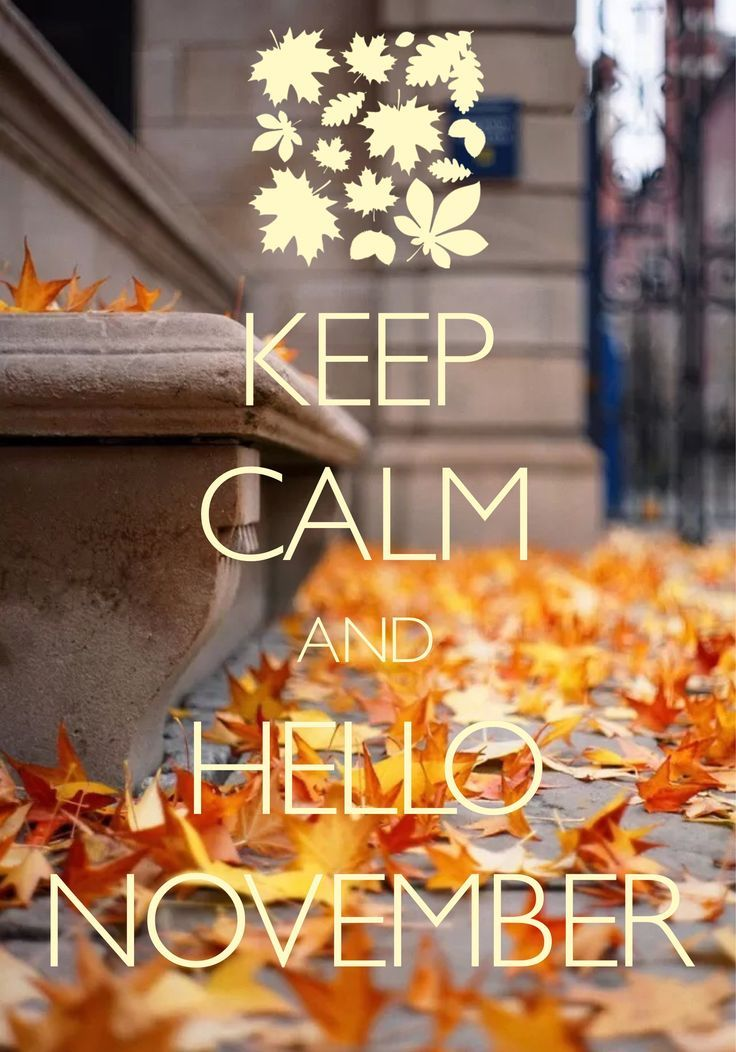 Keep Calm And Hello November Pictures Photos And Images