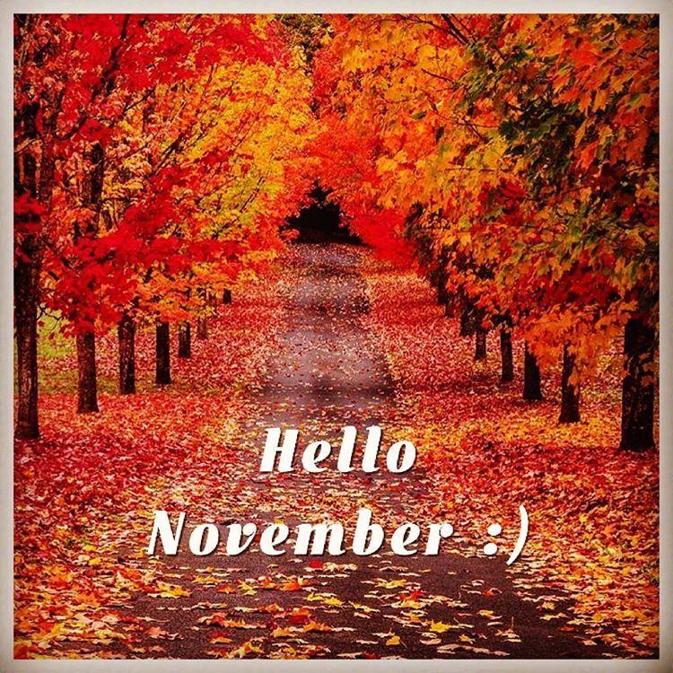 hello november itsnasb - photo #5