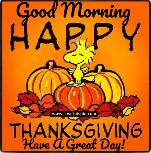 Funny Thanksgiving Quotes For Facebook: Good Morning, Happy Thanksgiving, Have A Great Day