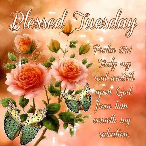 Blessed Tuesday Pictures, Photos, and Images for Facebook