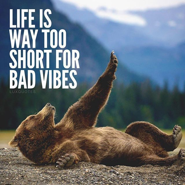 Life Is Way Too Short For Bad Vibes Pictures, Photos, and