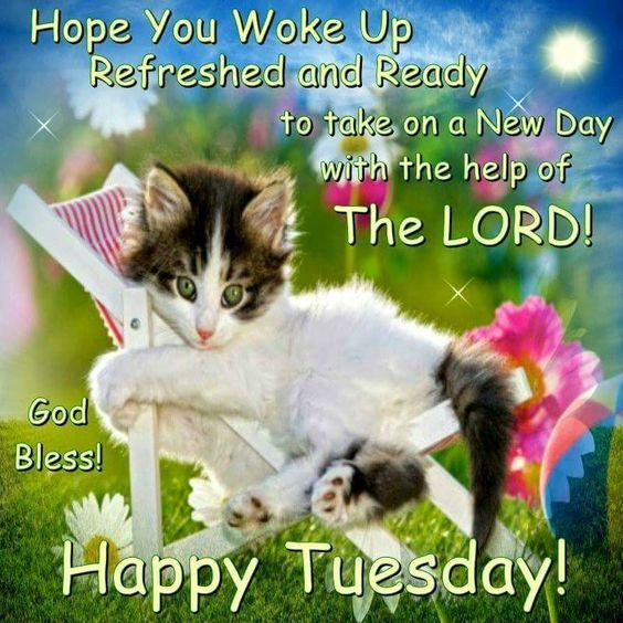 Refreshing Good Morning Quotes: God Bless! Happy Tuesday! Pictures, Photos, And Images For