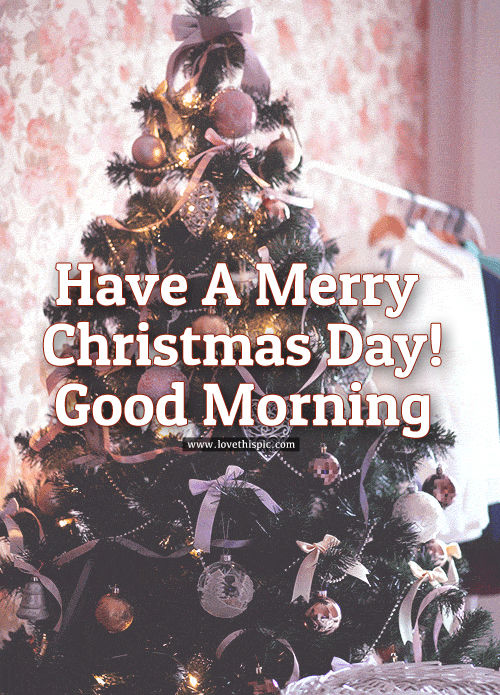 have a merry christmas day  good morning pictures  photos