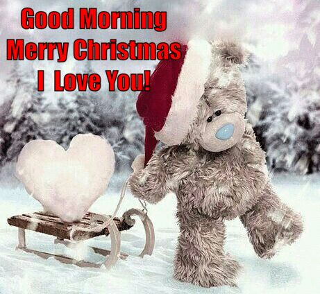 Merry Christmas I Love You.Good Morning Merry Christmas I Love You Pictures Photos