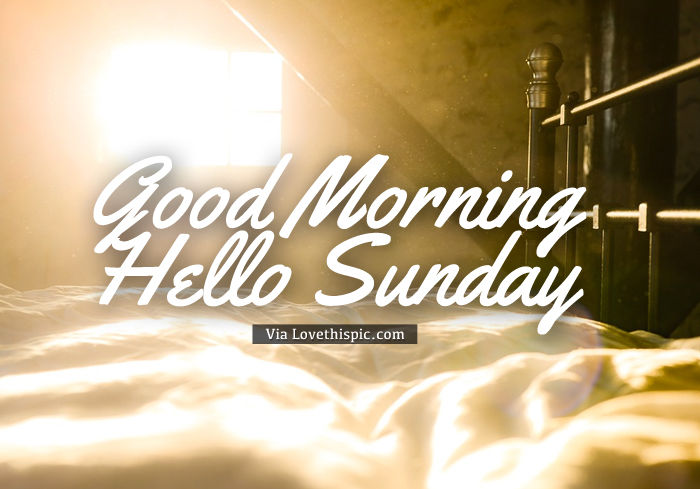 Good Morning Hello Sunday Pictures Photos And Images