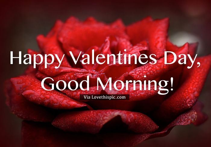 Hy Valentine S Day Quote With Good Morning