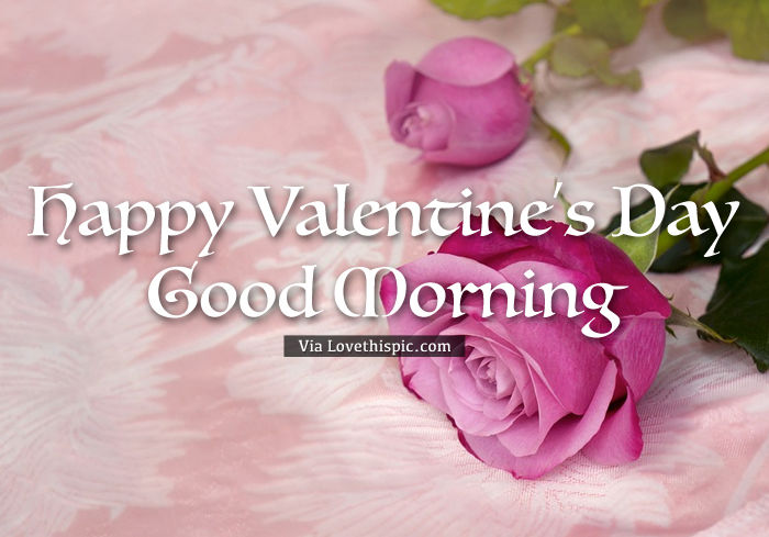Happy Valentine S Day Roses Good Morning Pictures Photos And