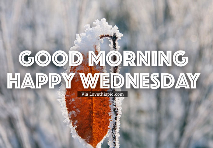 Good Morning Bitter Cold Wednesday Pictures, Photos, And