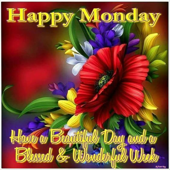 Happy Monday Have A Beautiful Day And Wonderful Week Pictures Photos Images For Facebook Tumblr Pinterest Twitter