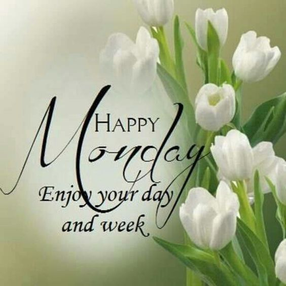 Happy Monday Enjoy Your Day And Your Week Pictures Photos