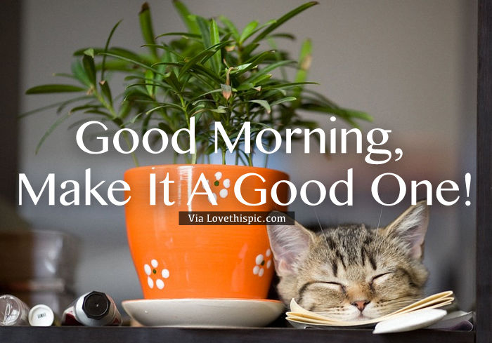 Good Morning Make It A Good One Pictures Photos And