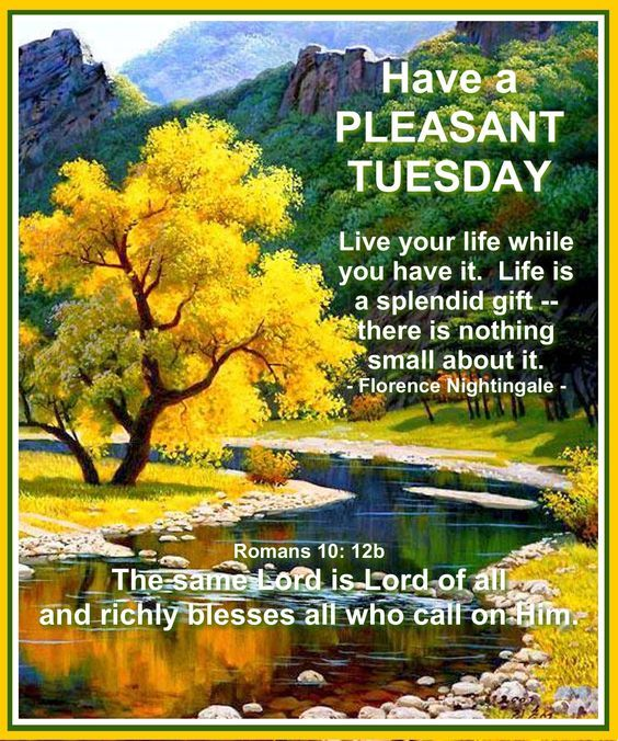 Have A Pleasant Tuesday Pictures, Photos, and Images for