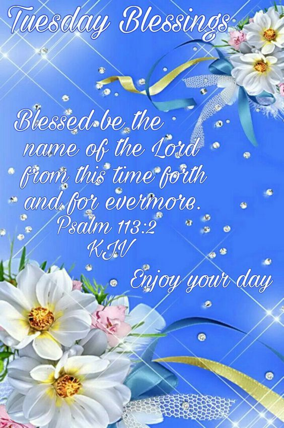 Blessed By The Name Of The Lord, Tuesday Blessings