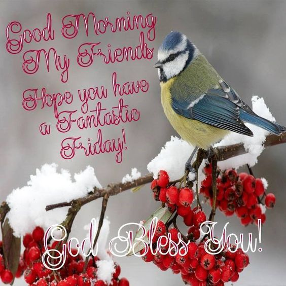 Hope You Have A Fantastic Friday, Good Morning My Friends