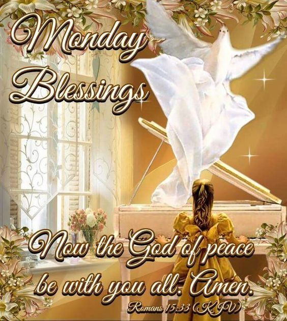 Flying Dove Monday Blessings Pictures Photos And Images