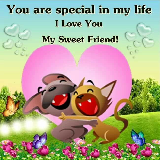 Love Finds You Quote: You Are Special In My Life...I Love You My Sweet Friend