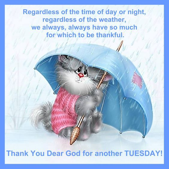 Rainy Thankful Tuesday Pictures, Photos, and Images for