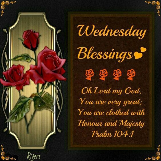 3 Rose Wednesday Blessing Pictures, Photos, and Images for