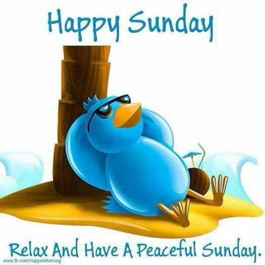 323640-Relaxing-Peaceful-Sunday.jpg