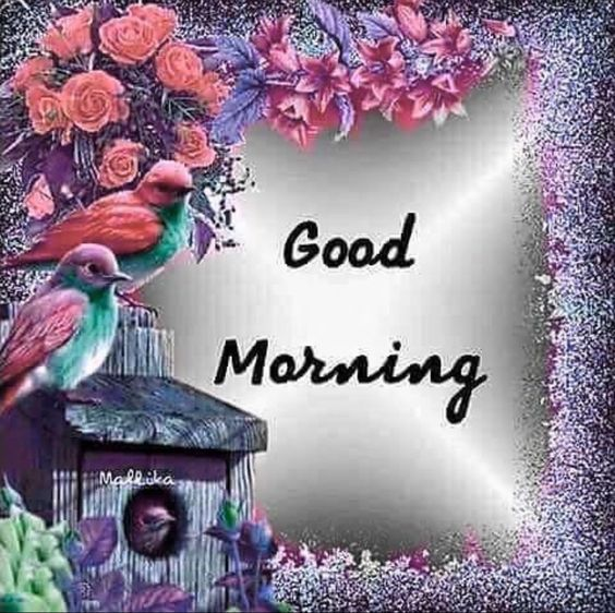 Good morning flowers quotes
