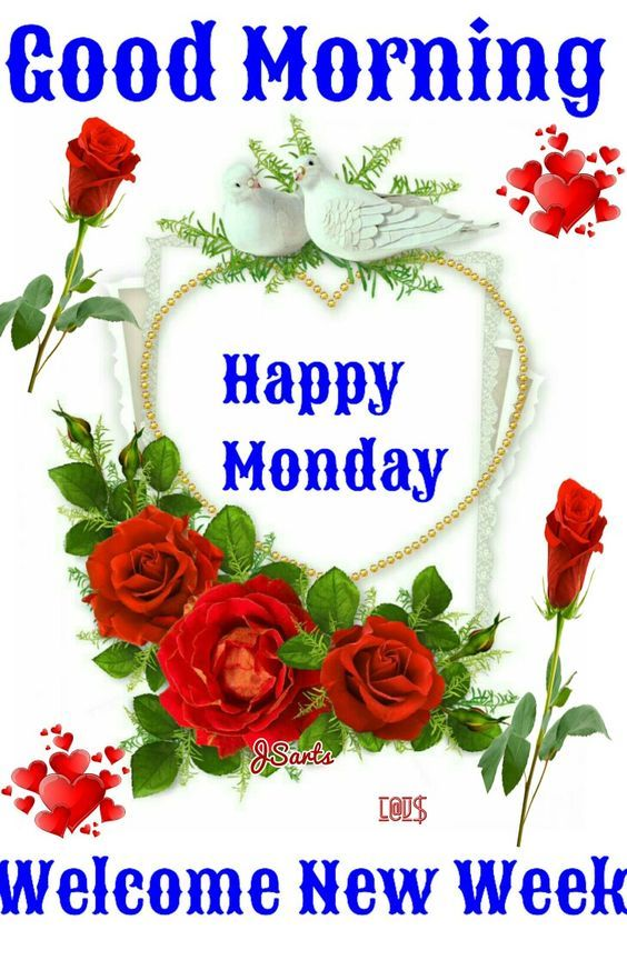 Welcome a new week good morning happy monday pictures - Good morning monday images ...