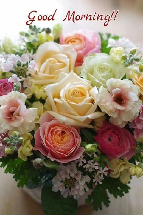 Bouquet Good Morning Roses Pictures Photos And Images