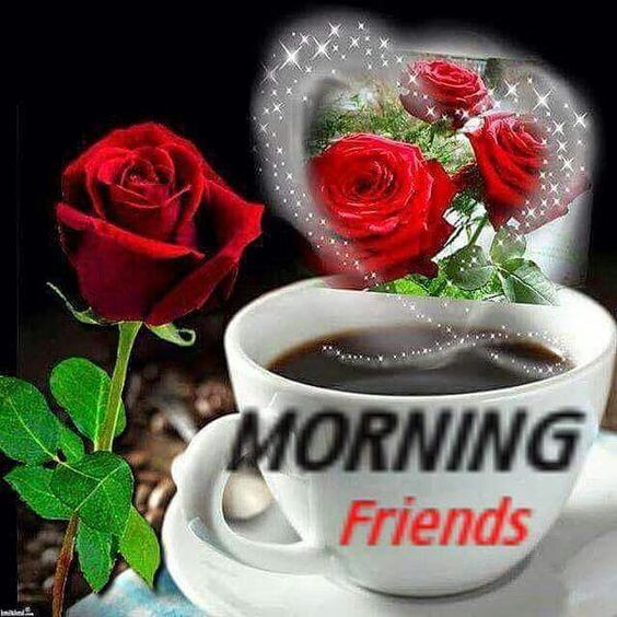 Morning Good friend with roses pictures foto