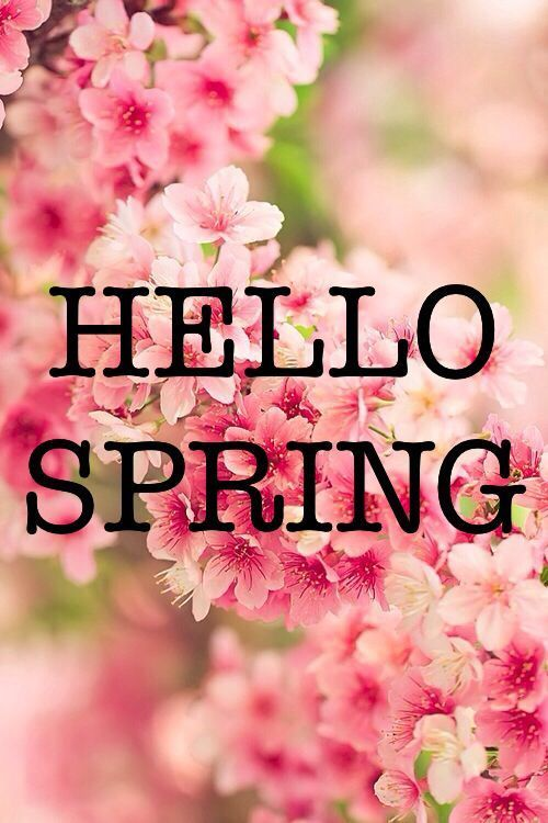 Hello spring image quote pictures photos and images for facebook tumblr pinterest and twitter - Happy spring day image quotes ...
