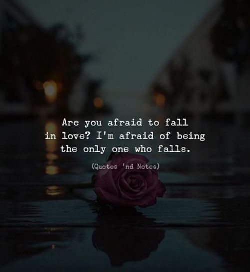Scared To Fall In Love Quotes Simple Are You Afraid To Fall In Love I'm Afraid Of Being The Only One Who