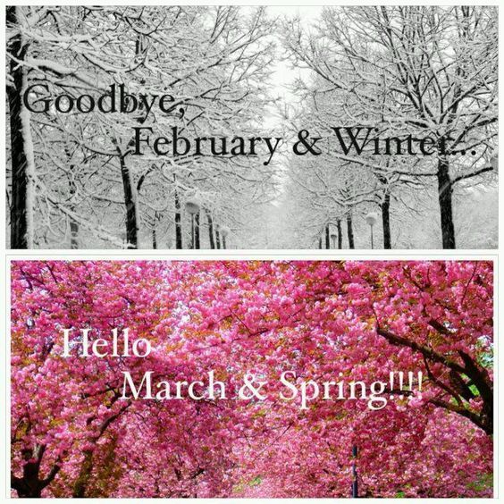 goodbye february amp winter hello march amp spring pictures