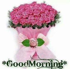 Pink Roses Good Morning Quotes Pictures Photos And Images For