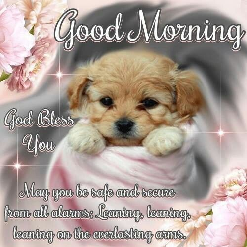 Cuddly Puppy Good Morning Quote Pictures Photos And Images For Facebook Tumblr Pinterest And Twitter
