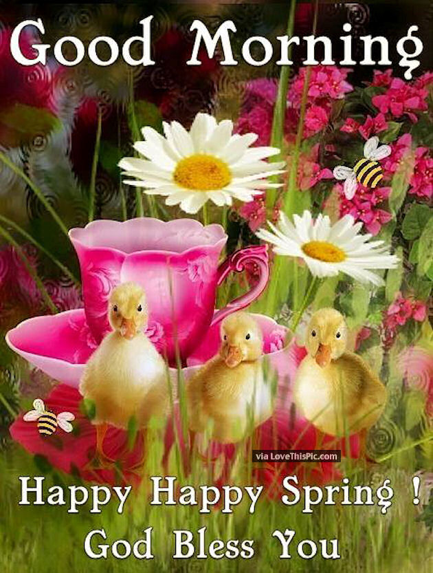 Good Morning Happy Spring God Bless You Pictures, Photos