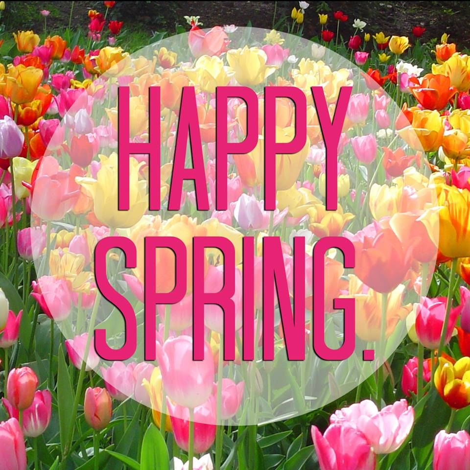 Happy Spring To Everyone Pictures, Photos, and Images for ...
