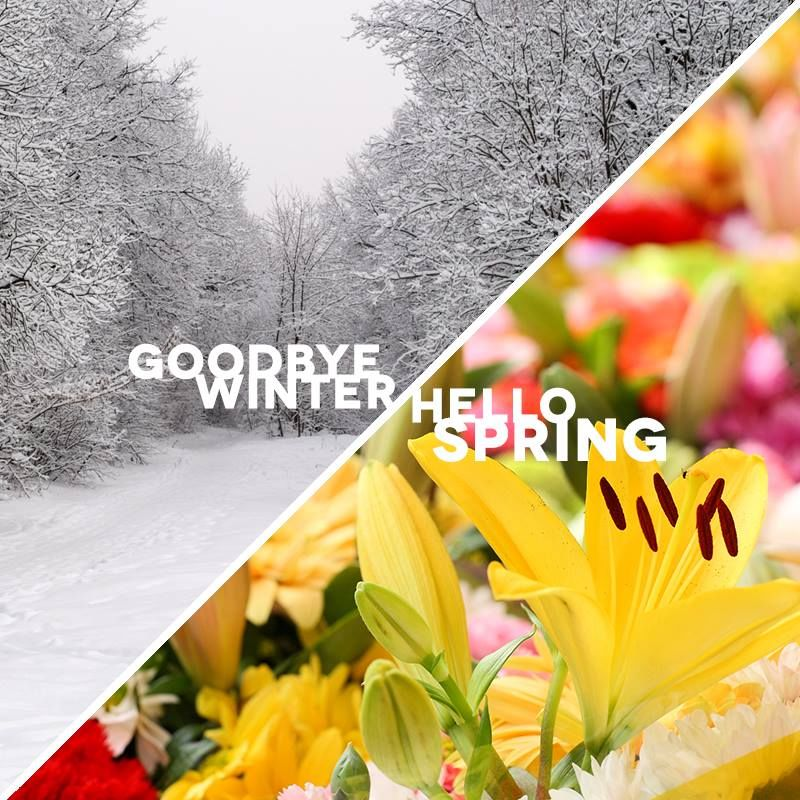 goodbye winter hello spring image quote pictures photos and