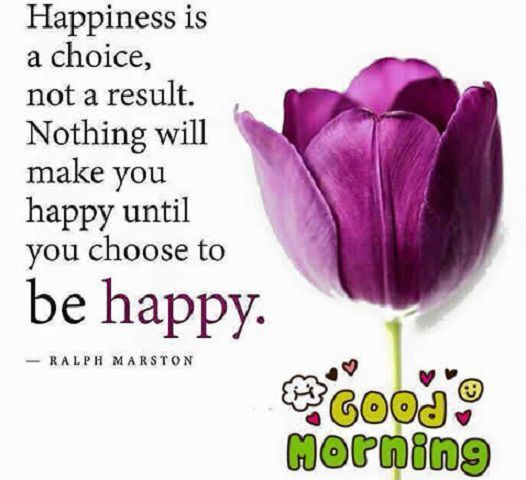 Select Quote Life: Happiness Is A Choice, Not A Result. Good Morning Pictures