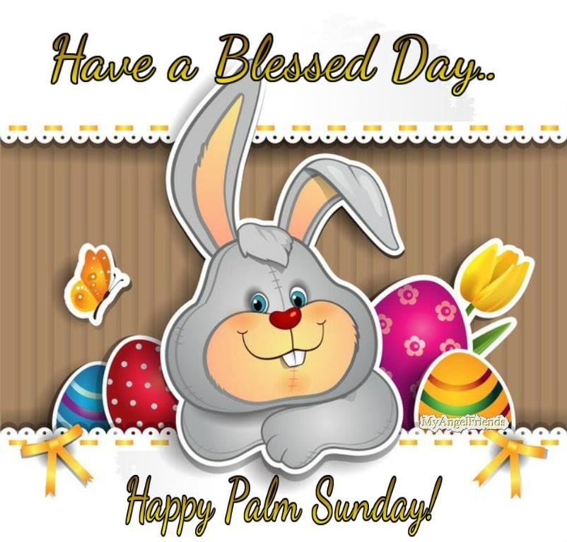 have a blessed day happy palm sunday pictures, photos, and images