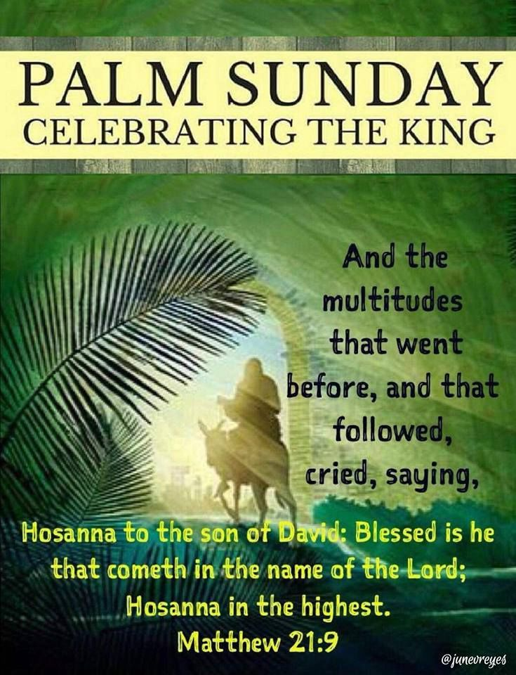 Palm sunday celebrating the king pictures photos and images for palm sunday celebrating the king pictures photos and images for facebook tumblr pinterest and twitter m4hsunfo