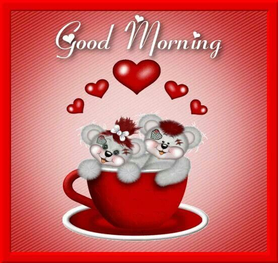 Teddy Bears In A Cup Morning Heart Quotes Pictures, Photos