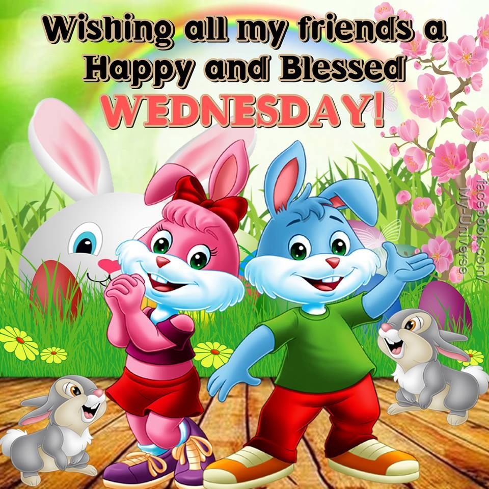 Wishing All My Friends A Happy And Blessed Wednesday