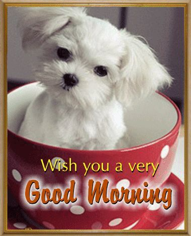Puppy Good Morning Pictures, Photos, and Images for