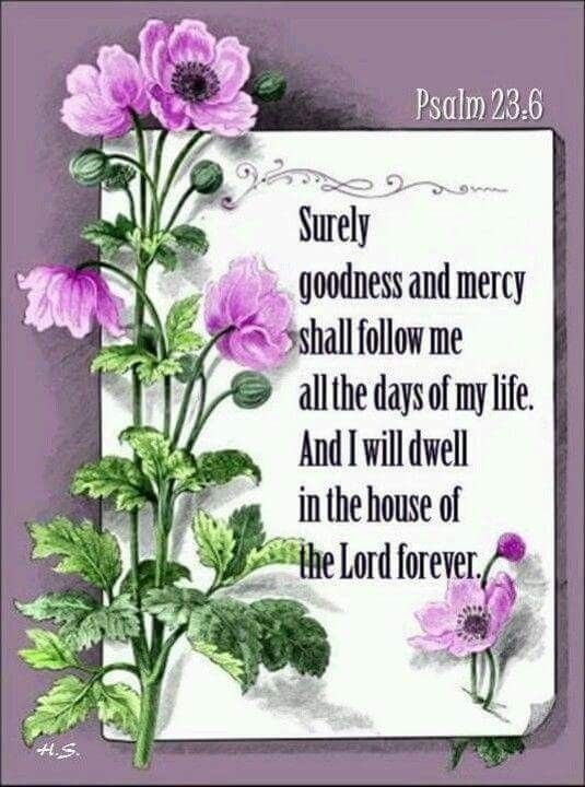 Surely Goodness And Mercy Shall Follow Me All The Days Of