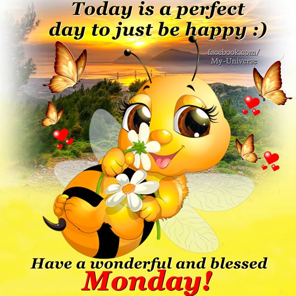 Have A Wonderful And Blessed Monday Pictures Photos And