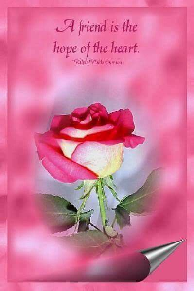 A Friend Is The Hope Of The Heart Pictures Photos And