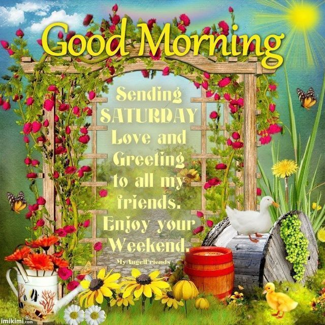 Good morning sending saturday love greeting to all my friends good morning sending saturday love greeting to all my friends m4hsunfo
