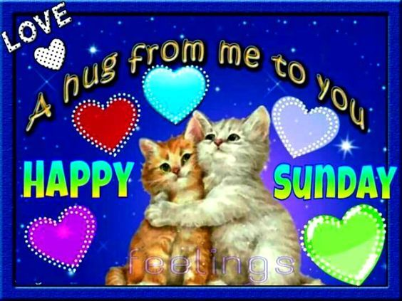A Hug From Me To You, Happy Sunday Pictures, Photos, And