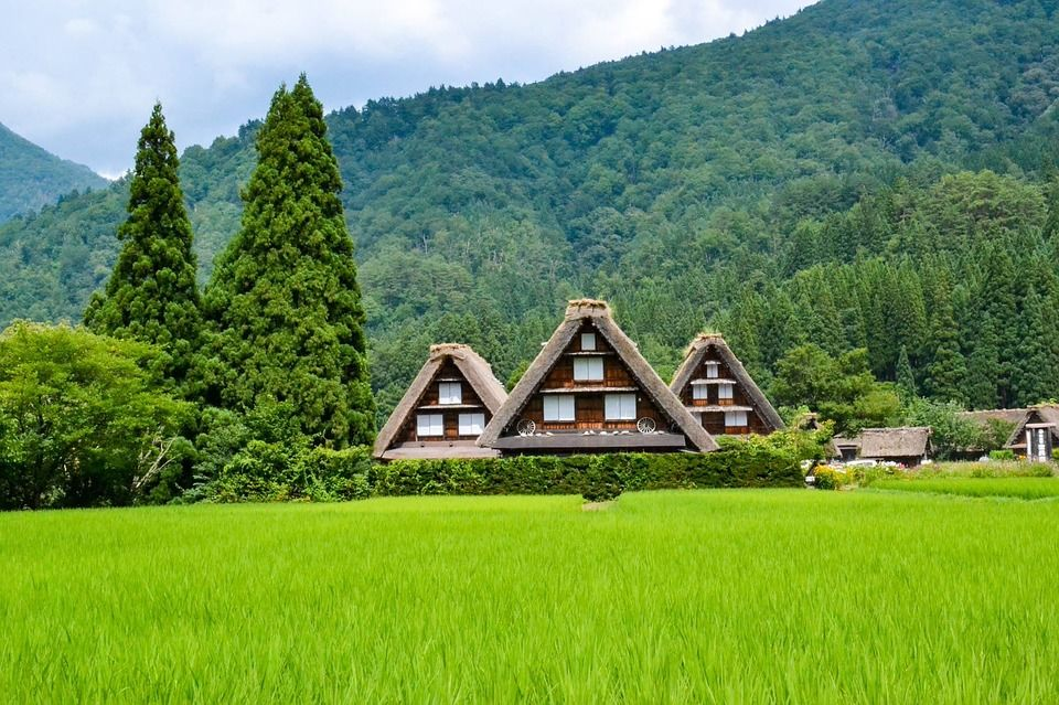 Japanese Mountain Landscape Pictures Photos And Images