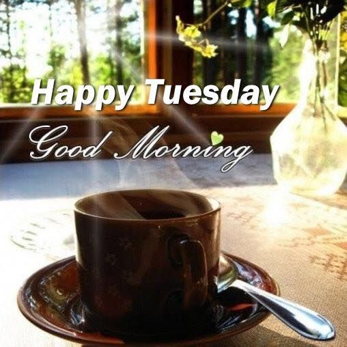 Sunshine Happy Tuesday Good Morning Image Pictures Photos