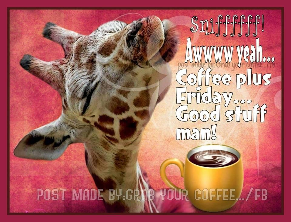 Awwww Yeah...coffee Plus Friday...good Stuff Man! Pictures ...