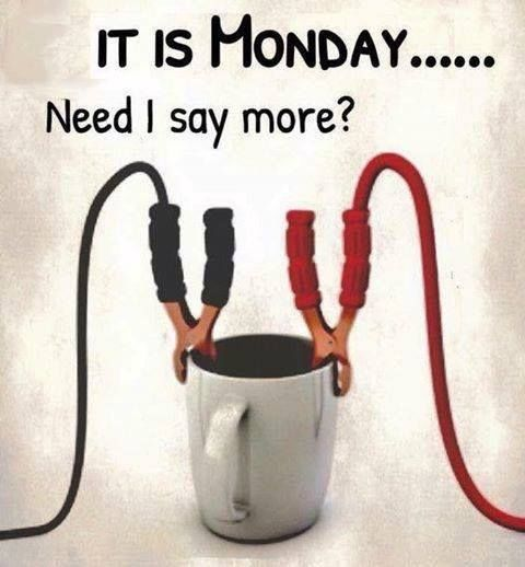 Funny Monday Morning Coffee: It Is Monday....Need I Say More? Pictures, Photos, And